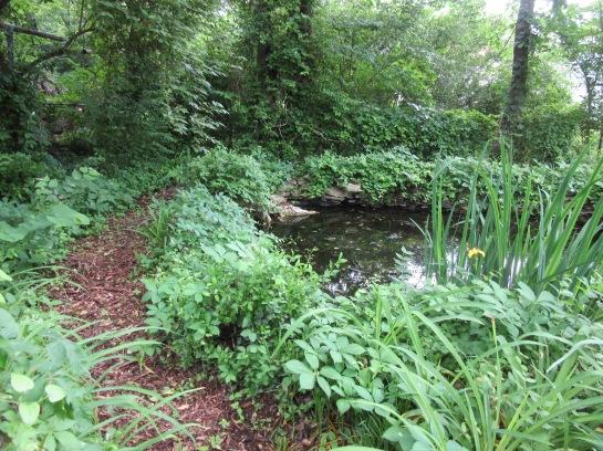 **pond path